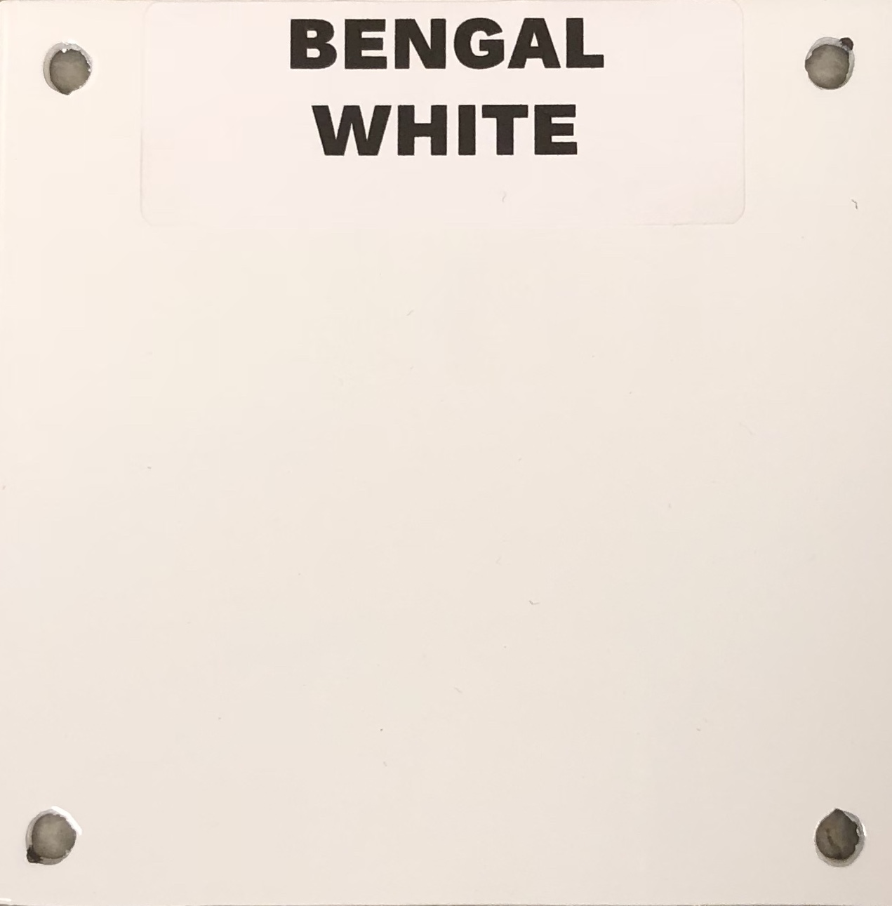 NEW BENGAL WHITE
